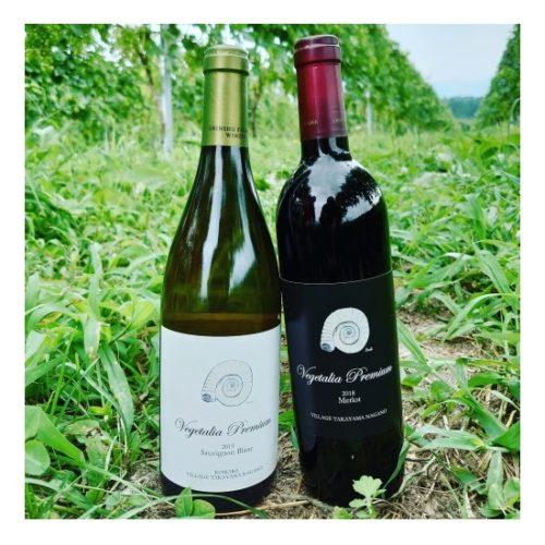 保護中: ベジタリア プレミアム ワインセット